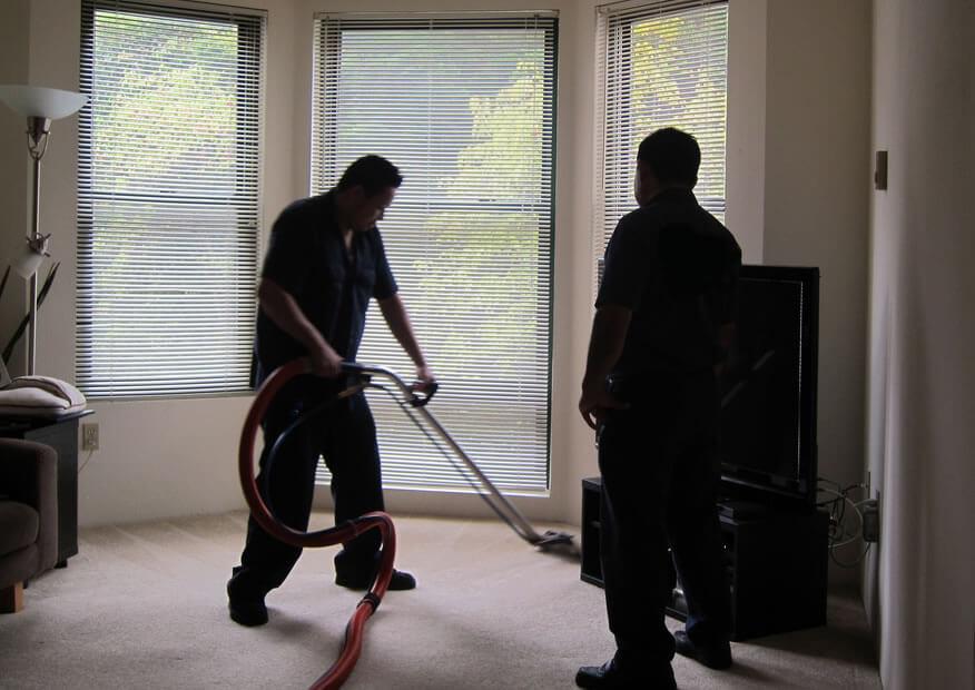 IogoClean limpeza, higienização, lavagem e impermeabilização de carpete
